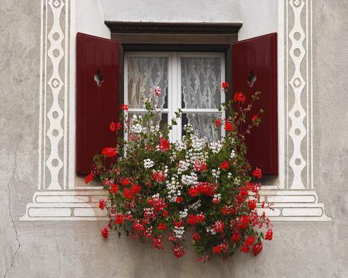 Деревянные евро окна – это современные, экологичные изделия.